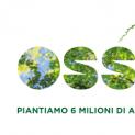 """""""Ossigeno"""", nel mese di maggio anche a Formia la Regione Lazio piantumerà 460 alberi dando vita a quattro boschi didattici."""
